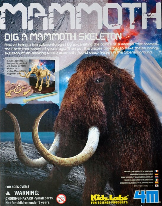 Excavate a mammoth skeleton