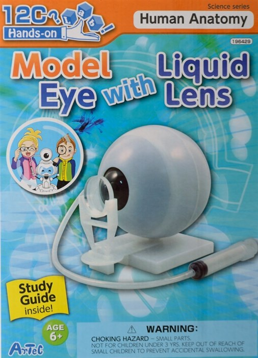 Model of an eye - with liquid lens