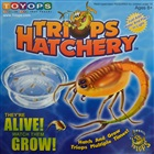 Prehistoric marine animals - Triops Hatchery